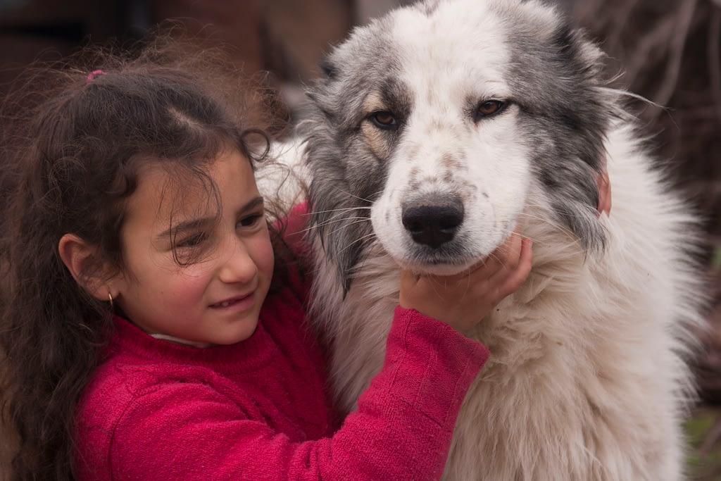 Бим и армянская девочка