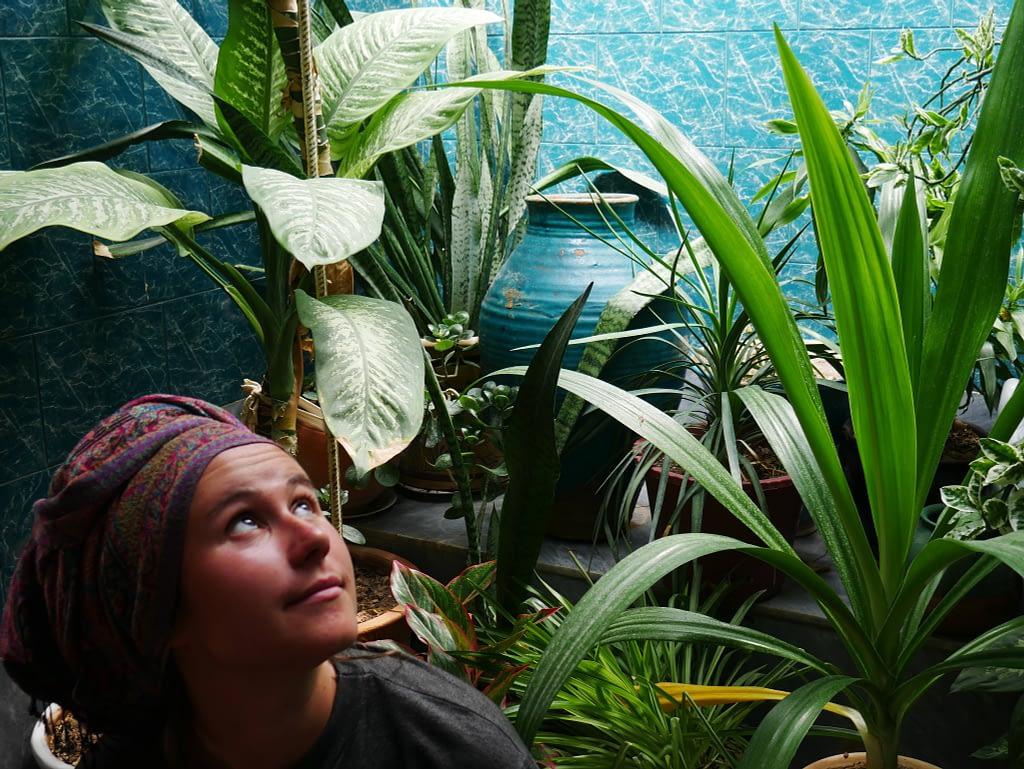 Девушка сидит посреди растений смотрит вверх